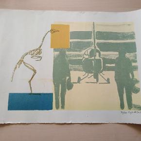 Originalt tryk signeret Anja M. Bache Måler 57x38cm Sender med dao kr 38