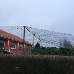 Gundebo hegn Sælges grundet flytning  1 år gammelt  Nypris: 13.000  Kom gerne og se det, det står i 6670 Holsted.