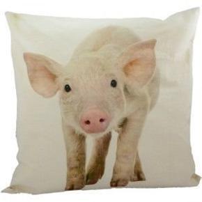 Fin pude fra Mars & More med en gris. Måler 43 × 43 cm. Pudebetrækket kan tages af puden. Kan sendes.  Giv et bud