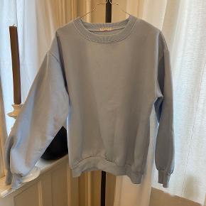 Pitaya sweater