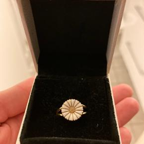 Lund Of Cph ring