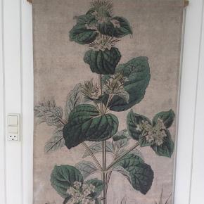 Vægbillede i stof med botanik motiv. Måler 106 x 74 cm. Hænges op med snor som kan forkortes. Det er aldrig brugt. Kom med et bud.