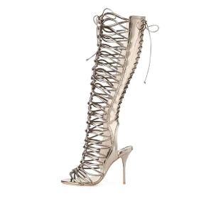 Sophia webster støvler