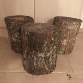 Ask og egetræs stubbe, måler i diameter 23-28 cm og 35-37 cm i højden. Kan bruges til skamler, taburetter inde eller ude ved bålpladsen samt små borde. Kan skæres ud til tapas tallerkener eller til juledekorationer. Har omkring 20 stk. Træet er fældet for 5 år siden. Pris pr. stk. 100,- Pris for 4 stk. - 350,-