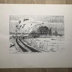 """Tegning/grafik af Erik Holbech Mortensen """"Hindsgavlskragerne samles jan. 99""""  Størrelse: 30x40 cm.   Enkelte håndteringsspor.   Sender gerne 👀"""