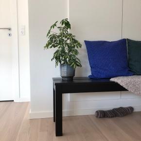 Sort bænk fra Ikea. Bænken fremstår som ny og har ingen skrammer. Den er ca. 1 år gammel.   Mål:  L:158-B:36-H:44