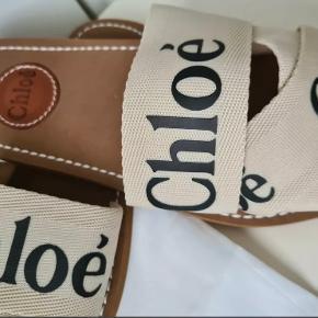 Chloé sandaler