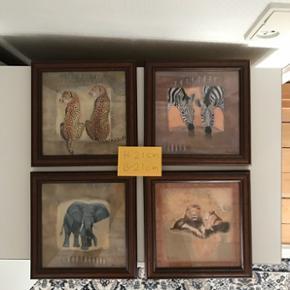 4 billeder af dyr. H 21 cm B 21 cm