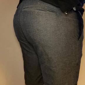 Vannucci shorts