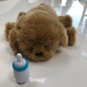 Little live pets snuggles my dream puppy. Som ny, sendes ikke