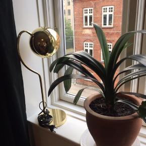 Smuk lampe købt i Norge for et par år tilbage.   Pæren medfølger.  Giv et bud! :)