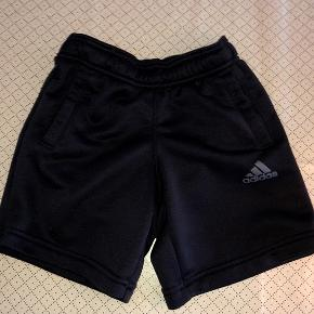 Adidas sorte shorts str 116  cm. Sendes for 37 kr