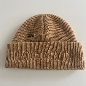 LACOSTE hat & hue