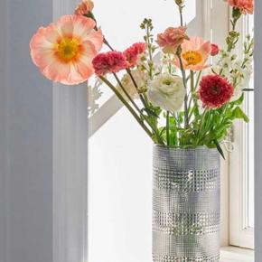 Specktrum vase