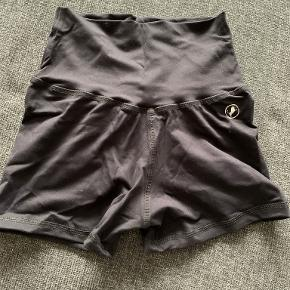Abs2b Shorts