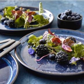 Sælger 4 blå Bitz middags tallerkener 27 cm  Er mørkere i virkeligheden end man lige regner med(blot til info)  Aldrig brugt