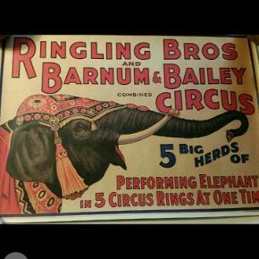 Flot ældre plakat fra en cirkus samling med elefant fra et af verden største cirkus Ringling og Barnun.