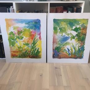 2 stk print/tryk af akvareller. Opklæbet på tykt pap. Måler 50x60 cm. Lille overfladisk hvid streg på det ene billede.   Kom med et bud.