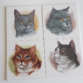 4 stk katte kakler til salg aldrig brugt de måler 15 × 15 cm, sælges for 50 kr pr stk