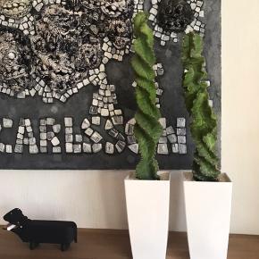Kaktus med krukker. 2 stk. Højde ca 70 og 78 cm.   Kan afhentes i Esbjerg.