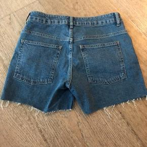 Helt nye shorts fra Basic Apparel. De er str. 29.
