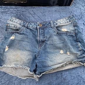 Esmara shorts