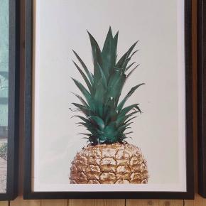 Ananas, inkl. ramme - mål: 30*40  Superfin plakat fra Desenio 🖼🌻  Har kun lige været oppe og hænge, men fortrød valget.   Alle fem plakater med rammer kan købes som samlet sæt for 900kr 🙌🌟