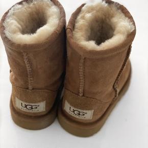Min datter har kun prøvet dem på. Hun kan desværre ikke passe dem.