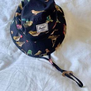 Herschel hat & hue