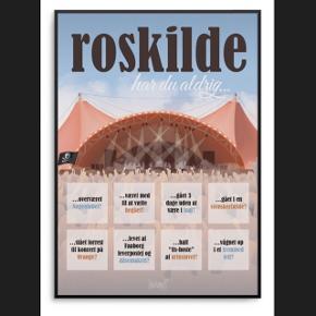 Dialægt har du aldrig Roskilde plakat 50x70 uden ramme sælges. Np 350 kr