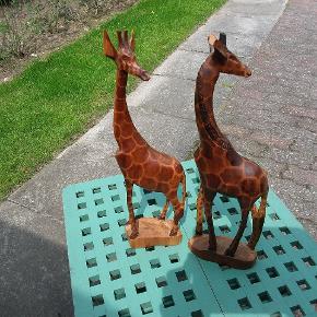 Fine giraffer