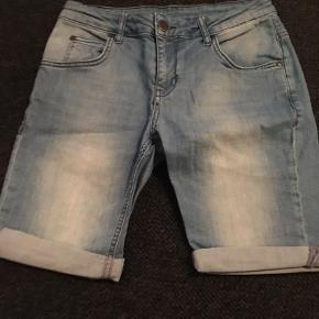 HOUNd shorts
