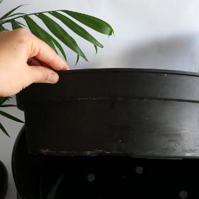 BORTGIVES / GRATIS  Kæmpe (tung keramik) bonsai Ikea potte.   Str. 39x39cm med en dybde på 11 cm. Plastpotten medfølger.  Afhentes på Frederiksberg.