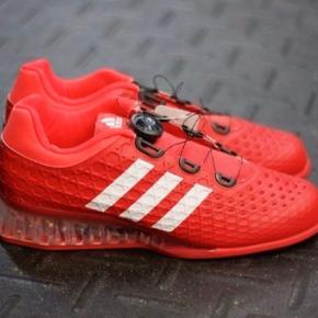 Adidas Vægtløft sko Fejler absolut intet