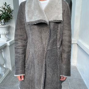 Levinsky Attitude Matters frakke