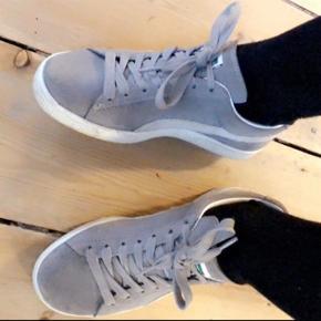 Puma sko str. 38 sælges. Brugt få gange, får dem ikke brugt. NP 750,- er åben for bud
