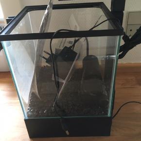 Lille akvarie med sten, pumpe, filter, lys