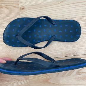 LACOSTE sandaler