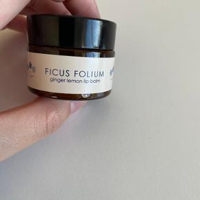 Ficus Folium hudpleje