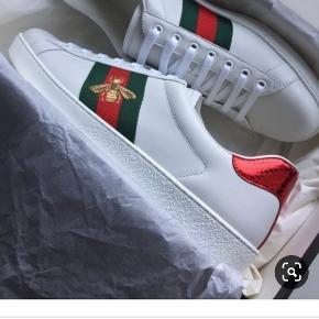Helt Nye Gucci Sneakers sælges til halv pris 👟😊🌸