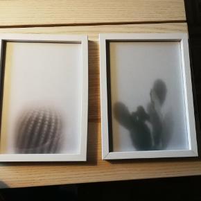 2 rammer hvide træ ramme fra hennetec kan bruges som skifterammer udvendige mål 17 x 23, indvendig mål 15 x 21,5 cm med billeder af Kristina Dam sælges samlet for 100 kr