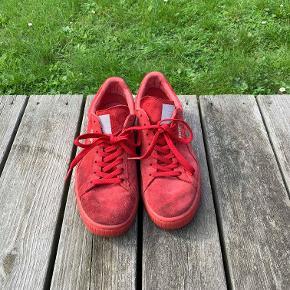 Hej! Jeg sælger disse fine Puma Suede sko i farven rød. De er størrelse 42. De er blevet brugt lidt, men har stadig meget tid tilbage i sig. Jeg sælger dem til 150 kr. Hvis du har nogle spørgsmål til skoene, så spørg løs.  Tjek gerne mine andre annoncer ud for en masse billige ting!