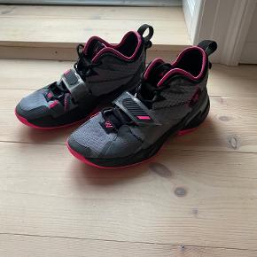Air Jordan sportssko